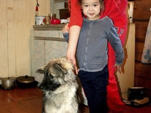 Bé gái 5 tuổi sống sót 12 đêm trong rừng nhờ... cún cưng