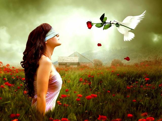 Những cảm xúc khi yêu ai rồi cũng sẽ trải qua