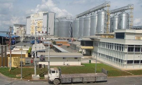 """Tỉ phú Indonesia """"thâu tóm"""" nhà máy chế biến bột mỳ ở VN - 1"""