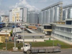 """Tỉ phú Indonesia """"thâu tóm"""" nhà máy chế biến bột mỳ ở VN"""