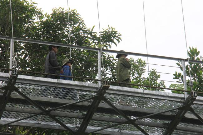 """Cận cảnh """"cầu treo trên mây"""" ở Quảng Ngãi - 7"""