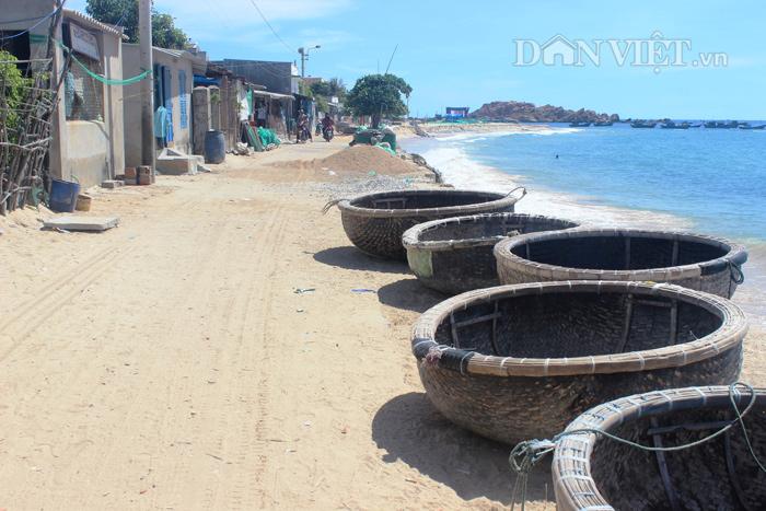 Chùm ảnh: Đẹp bình yên nơi biển Nhơn Hải - 4