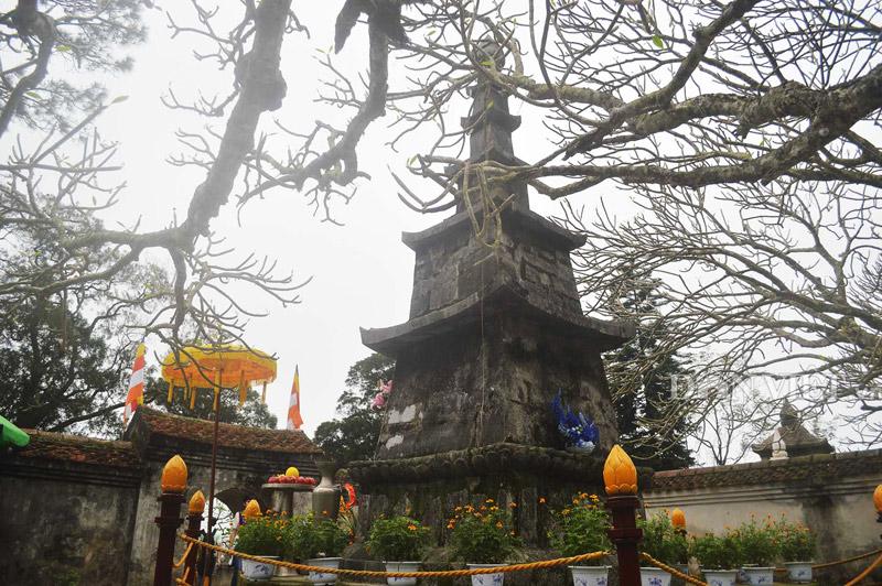 Ngắm cây đại cổ 700 trăm năm ở non thiêng Yên Tử - 9