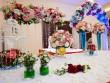 Khai trương Trung tâm hội nghị tiệc cưới Diamond Place II