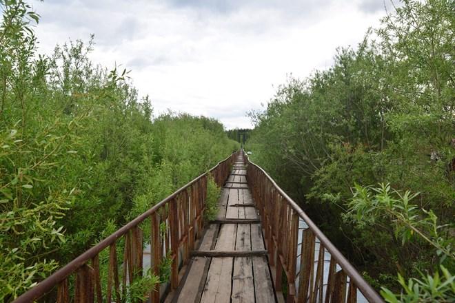 Ngỡ ngàng vẻ đẹp bình yên Siberia vào hè - 13