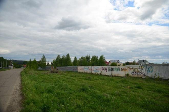 Ngỡ ngàng vẻ đẹp bình yên Siberia vào hè - 11