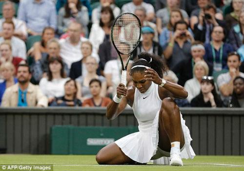 Wimbledon ngày 5: Berdych, Tsonga tiến bước - 4