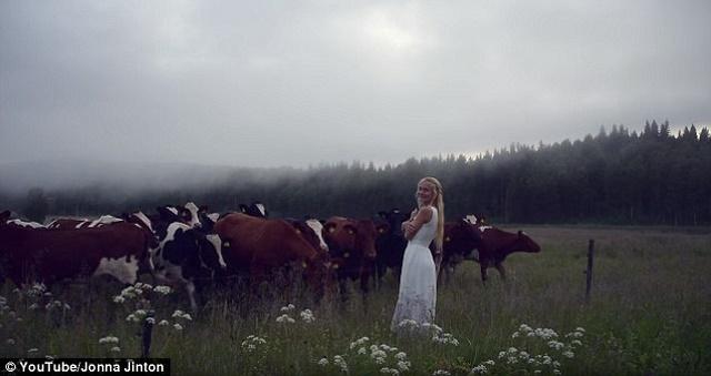 Video: Cô gái xinh đẹp hát, cả đàn bò xúm lại nghe - 1