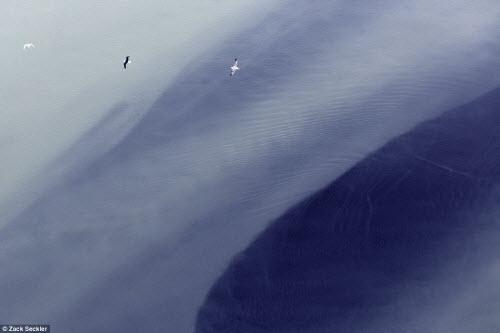 Vẻ đẹp ma mị của thiên nhiên Iceland nhìn từ trên cao - 1