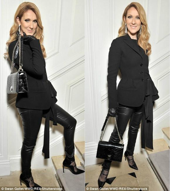 Celine Dion suýt ngã trước thềm show Christian Dior - 2