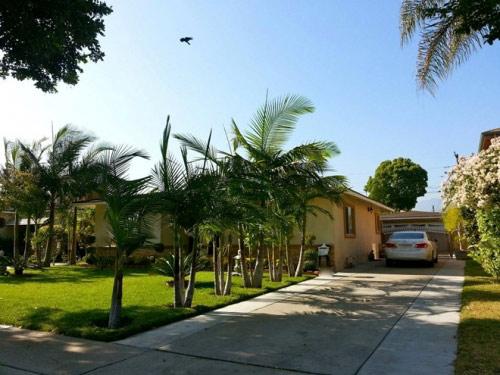 Cận cảnh ngôi nhà của Quang Lê ở Mỹ - 3