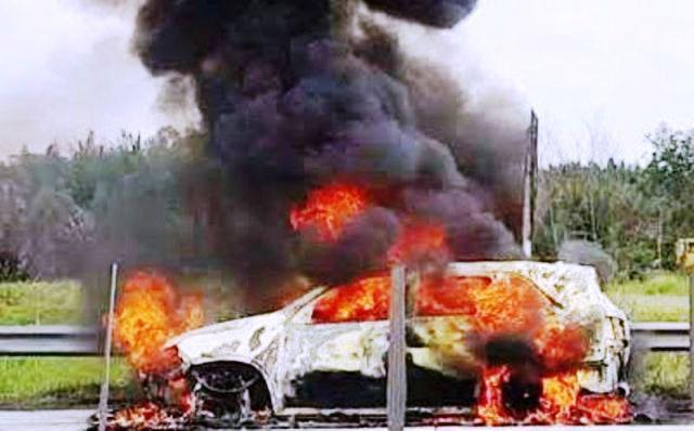 Ô tô bốc cháy dữ dội trên cao tốc TP.HCM – Long Thành – Dầu Giây - 1