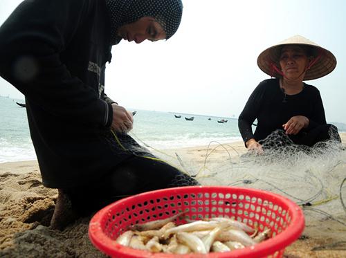 Ngư dân miền Trung được hỗ trợ việc làm sau vụ cá chết - 1
