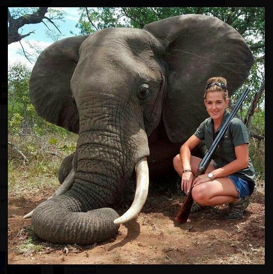Bà mẹ Nam Phi giết động vật hoang dã để kiếm sống - 1