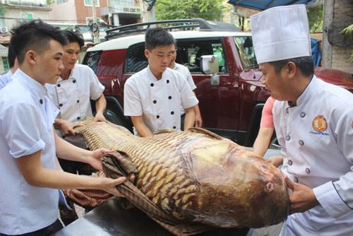 """Cá hô nặng gần 130kg """"bơi"""" từ Biển Hồ về Sài Gòn - 2"""