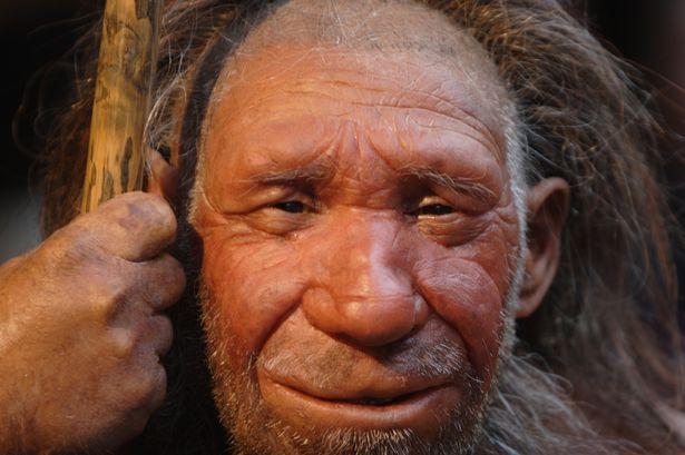 Phát hiện tộc người ăn thịt lẫn nhau 40.000 năm trước - 2