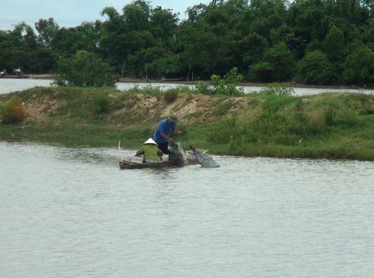 Bớt xén tiền hỗ trợ ngư dân sau vụ cá chết - 1