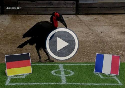 """Chi tiết Pháp - Đức: """"Gà trống"""" nở nụ cười (KT) - 22"""