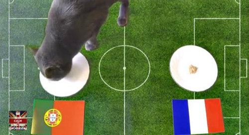 Chung ket Euro 2016 - 1