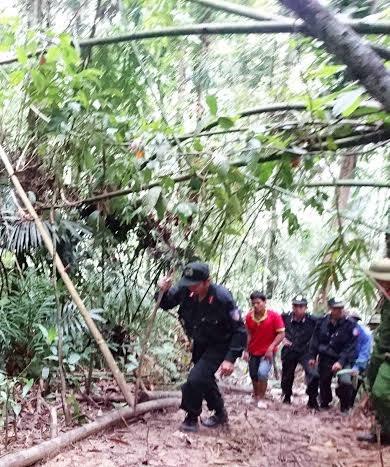Khám nghiệm hiện trường vụ phá rừng quy mô lớn - 2