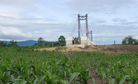 Kỳ lạ: Cầu xây xong, đường đi chẳng thấy - 4
