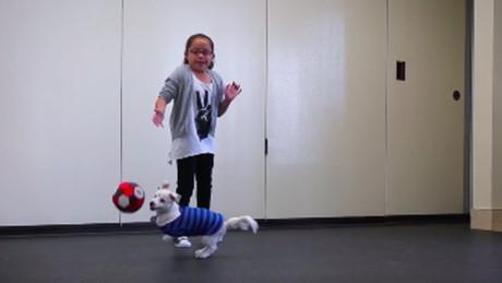 Tình bạn đặc biệt của bé gái 10 tuổi và chú chó điếc - 1