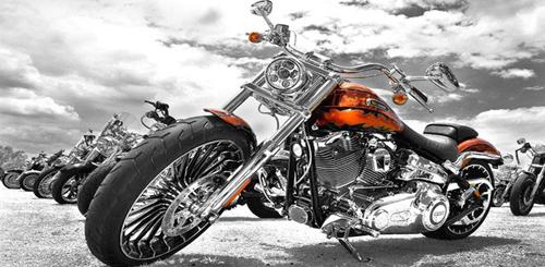 Gần nửa triệu xe Harley Davidson bị lỗi phanh - 1