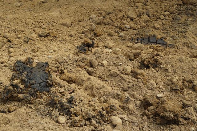 Cận cảnh khu trang trại chôn chất thải của Formosa - 3