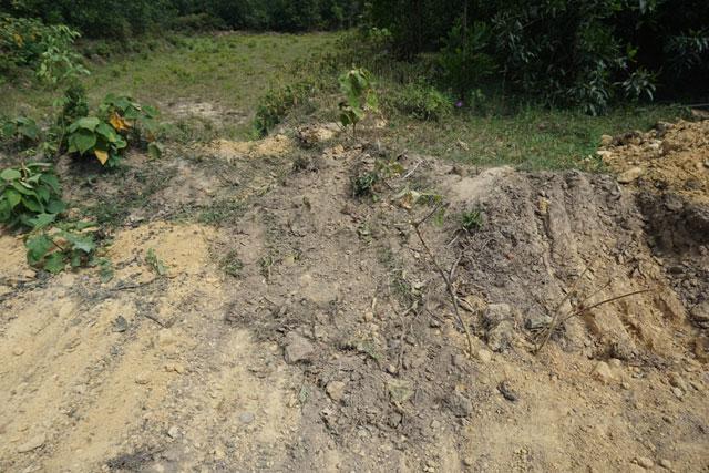 Cận cảnh khu trang trại chôn chất thải của Formosa - 8