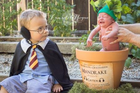 Em bé hóa thân thành Harry Potter siêu đáng yêu - 1