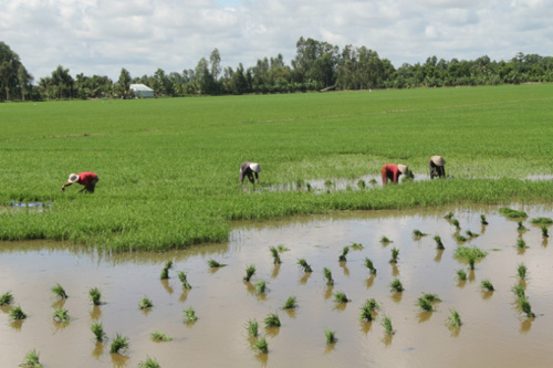 ĐBSCL khốn khó vì Trung Quốc biến Mekong thành của riêng - 2