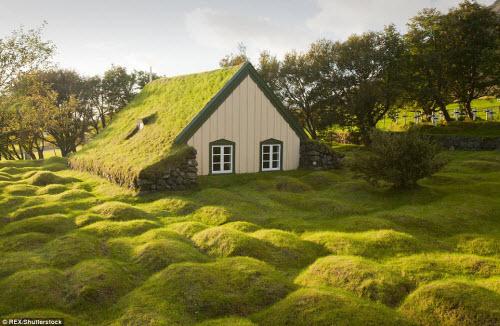 Những ngôi nhà mái cỏ đẹp như tranh vẽ ở Iceland - 1