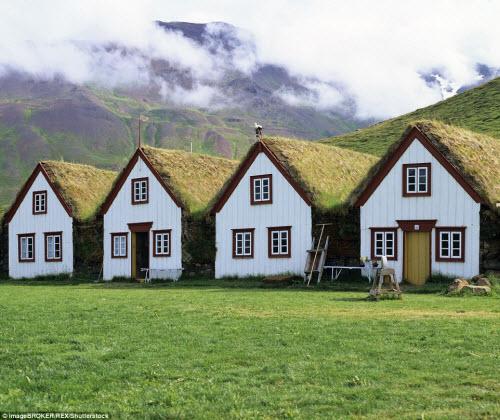 Những ngôi nhà mái cỏ đẹp như tranh vẽ ở Iceland - 8