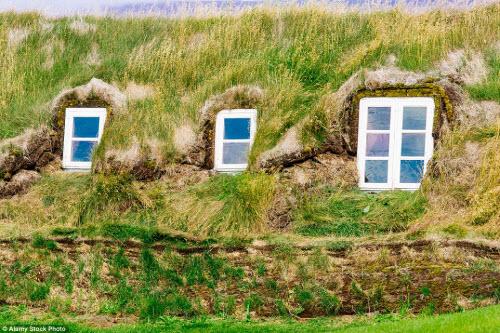 Những ngôi nhà mái cỏ đẹp như tranh vẽ ở Iceland - 12