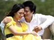 Video phim: Quang Dũng cầu hôn Mỹ Tâm