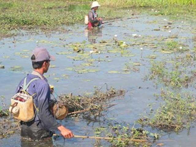Vượt biên bắt cá, 3 người bị bắn thương vong - 1