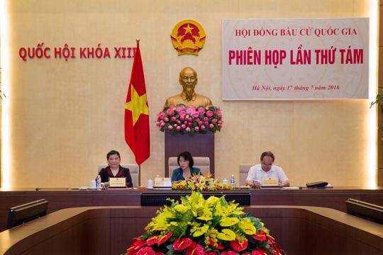 Doanh nhân Nguyệt Hường bị bác tư cách đại biểu QH - 1