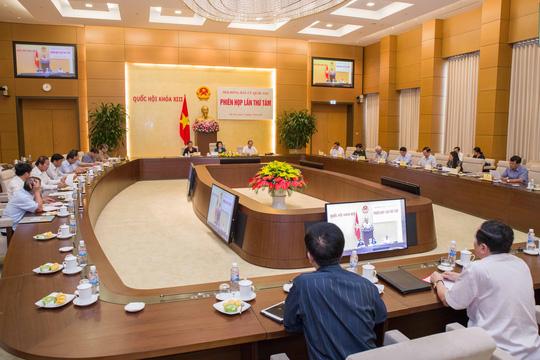 Doanh nhân Nguyệt Hường bị bác tư cách đại biểu QH - 2