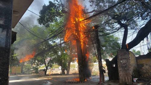 HN: Cột điện bốc cháy dữ dội trên đường Hoàng Quốc Việt - 1