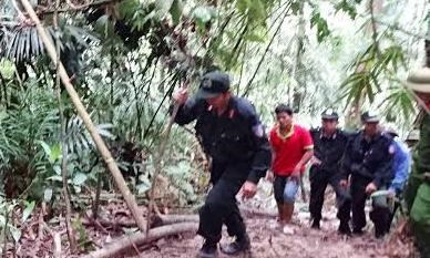Khởi tố, bắt giam thêm 8 đối tượng vụ phá rừng ở Lâm Đồng - 1
