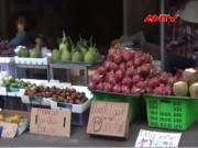 """Video An ninh - Tại sao trái cây giá rẻ ngập phố Sài Gòn vẫn """"ế""""?"""