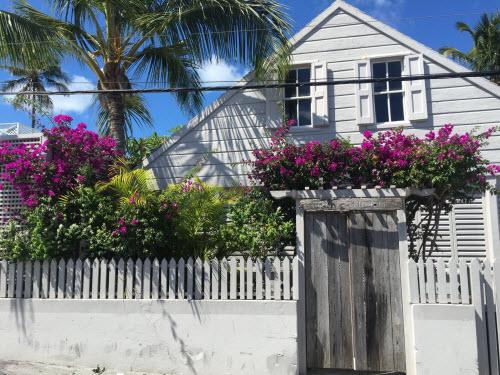 Sự thật về bãi biển cát hồng đẹp như mơ ở Bahamas - 2