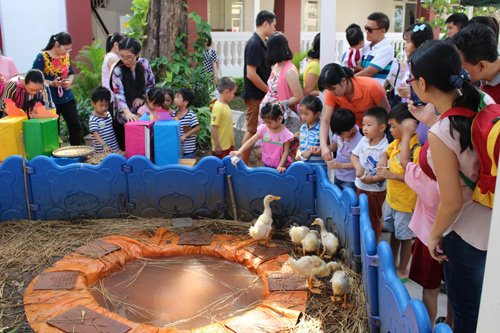 Trải nghiệm nông trại khó quên tại Saigon Academy - 1