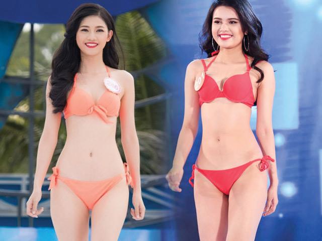2 em gái hoa, á hậu gây chú ý ở đấu trường sắc đẹp VN - 1