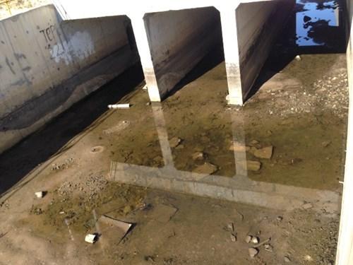 Cận cảnh rác chất đống, cá chết trong Formosa - 3