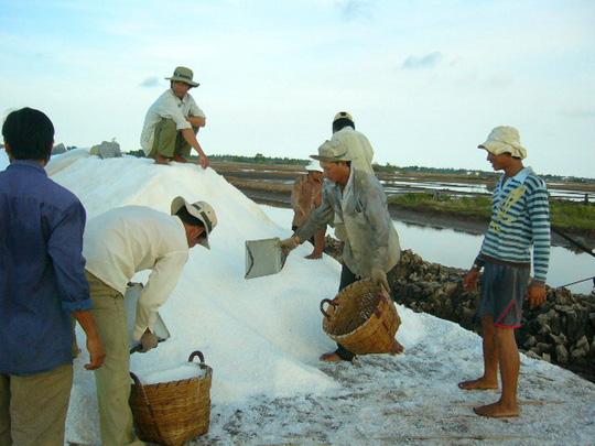 Muối ế trắng đồng, kho dự trữ hoang phế - 1
