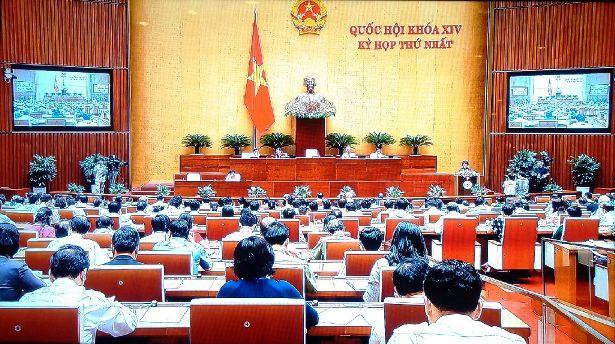 """""""Tại sao Quốc hội chưa có ý kiến gì về vụ Formosa?"""" - 1"""
