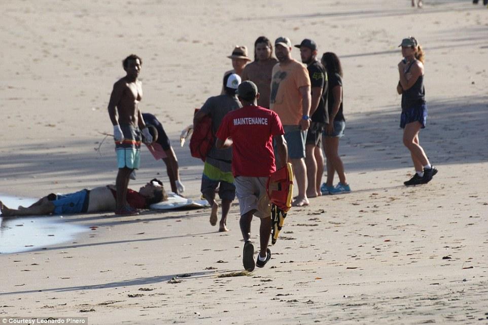 Cá sấu ngoạm đứt chân du khách ở bãi biển Costa Rica - 2