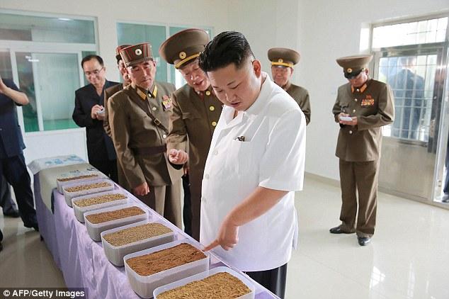 Kim Jong-un tươi như hoa dẫn tướng lĩnh đi thăm nhà máy - 3