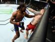 """UFC: """"Mưa đấm"""" dằn mặt lính mới xăm trổ"""